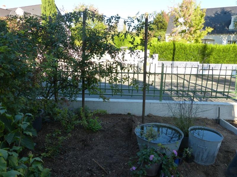 jardin des `MAL`AKHIM  - Page 3 Lysiane:historique_jardin:p1030823r