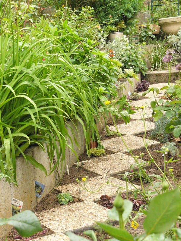 jardin des `MAL`AKHIM  Lysiane:historique_jardin:p1320852