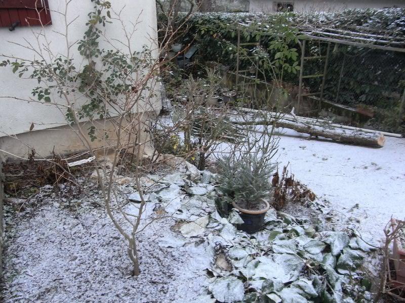 jardin des `MAL`AKHIM  Lysiane:historique_jardin:r0022946r