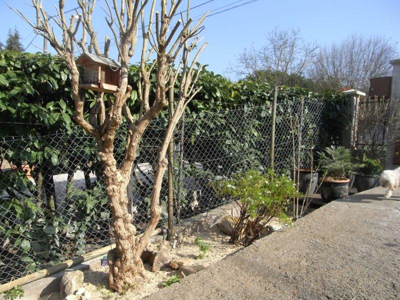 jardin des `MAL`AKHIM  Lysiane:historique_jardin:r0023553r