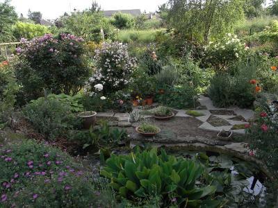 pomper recherche idée Lysiane:plantes_du_jardin:aquatique:r0017522