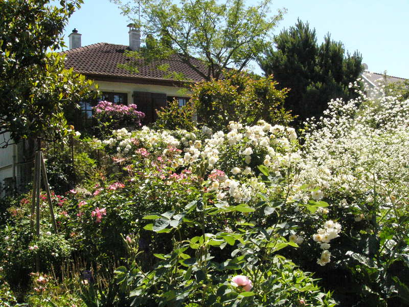 jardin des `MAL`AKHIM  Lysiane:visite_du_jardin:2009:p1340340