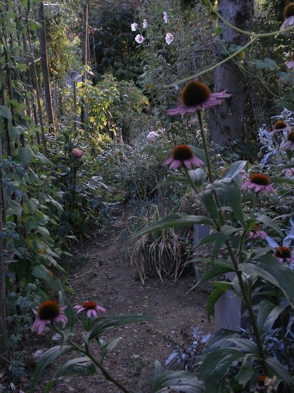 jardin des `MAL`AKHIM  Lysiane:visite_du_jardin:2009:r0011458_red