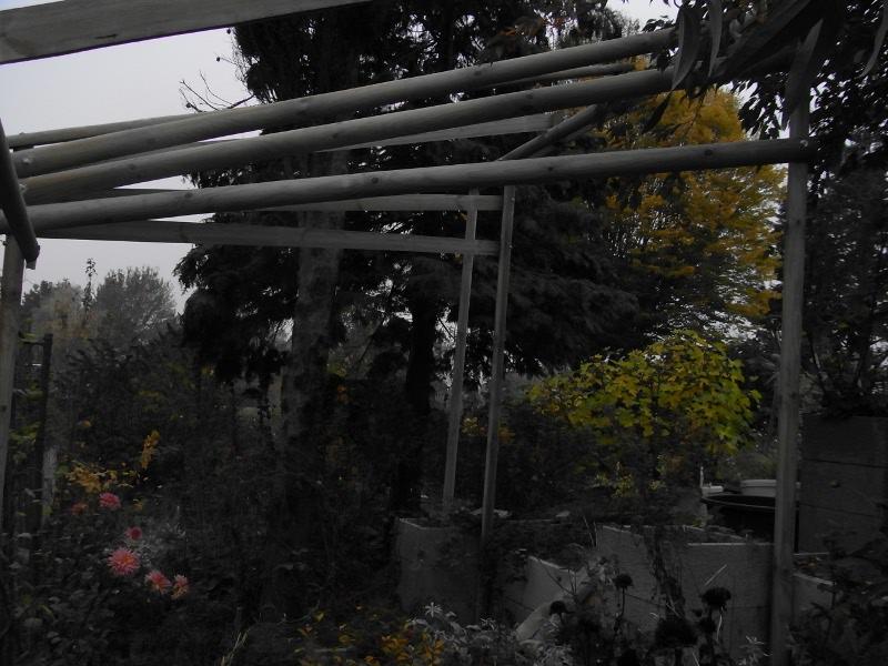 jardin des `MAL`AKHIM  Lysiane:visite_du_jardin:2009:r0013304_red