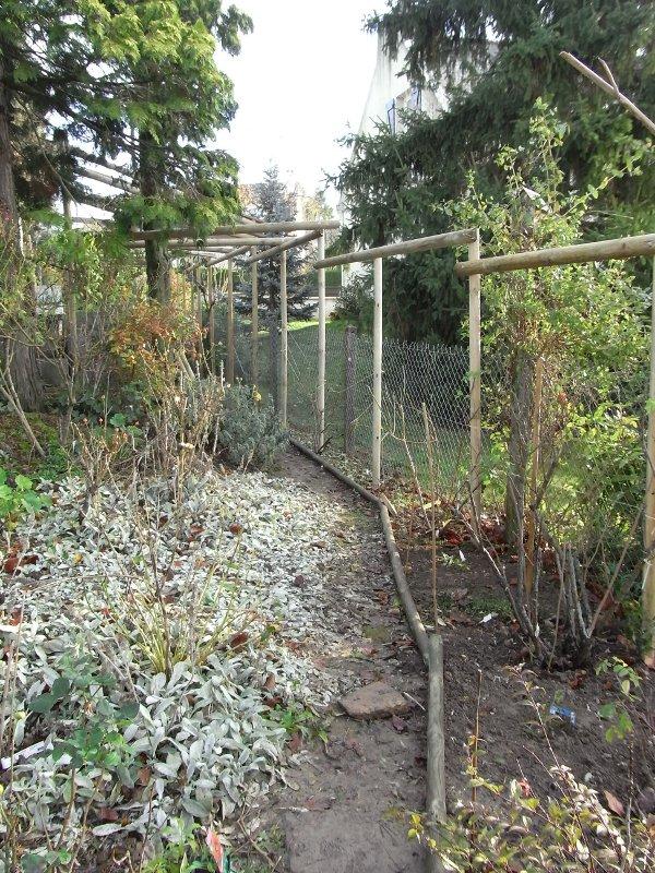 jardin des `MAL`AKHIM  Lysiane:visite_du_jardin:2009:r0013826_red