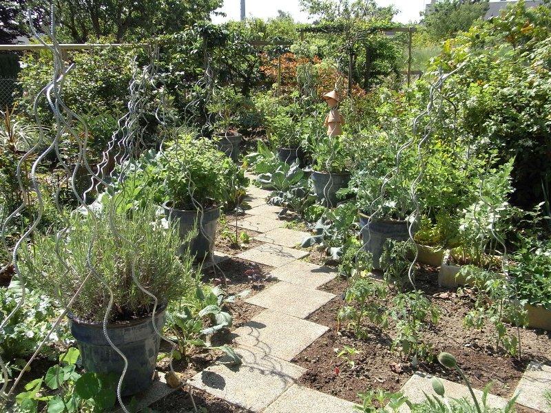 jardin des `MAL`AKHIM  Lysiane:visite_du_jardin:2010:r0016689_red