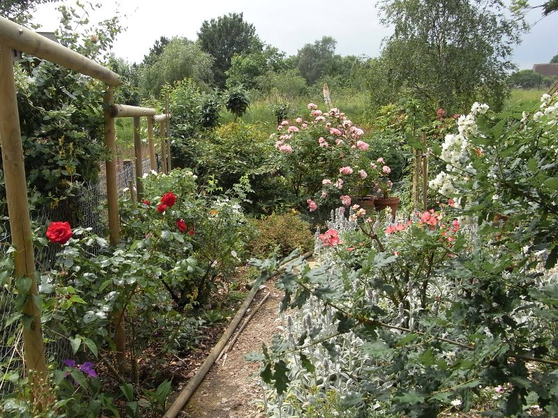 jardin des `MAL`AKHIM  Lysiane:visite_du_jardin:2010:r0017575r