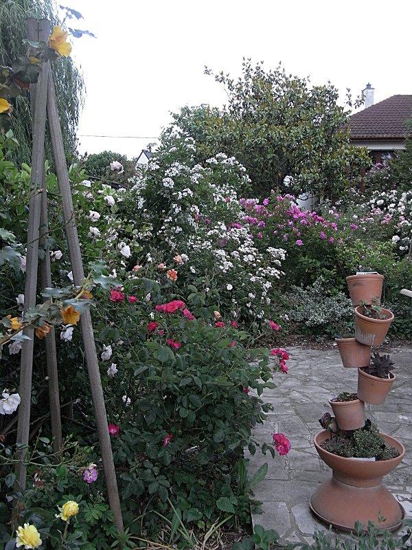 jardin des `MAL`AKHIM  Lysiane:visite_du_jardin:2010:r0017682r