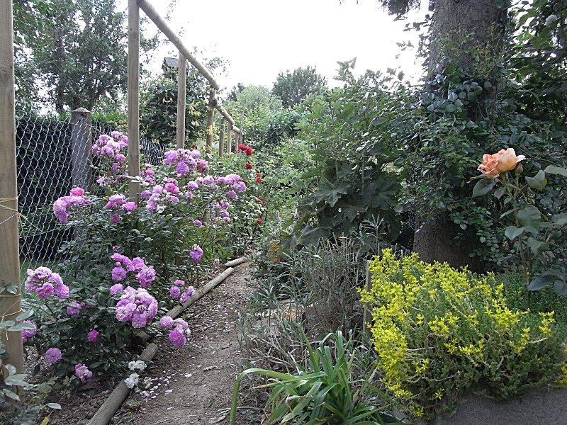 jardin des `MAL`AKHIM  Lysiane:visite_du_jardin:2010:r0018071r
