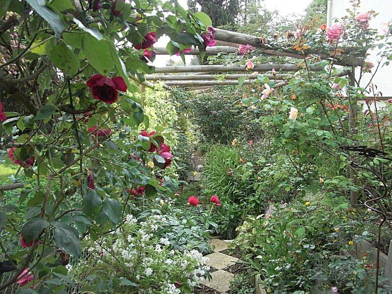 jardin des `MAL`AKHIM  Lysiane:visite_du_jardin:2011:r0025307r