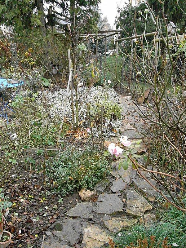 jardin des `MAL`AKHIM  Lysiane:visite_du_jardin:2011:r0030559r