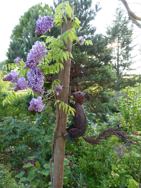 jardin des `MAL`AKHIM  Lysiane:visite_du_jardin:2012:p1000105r