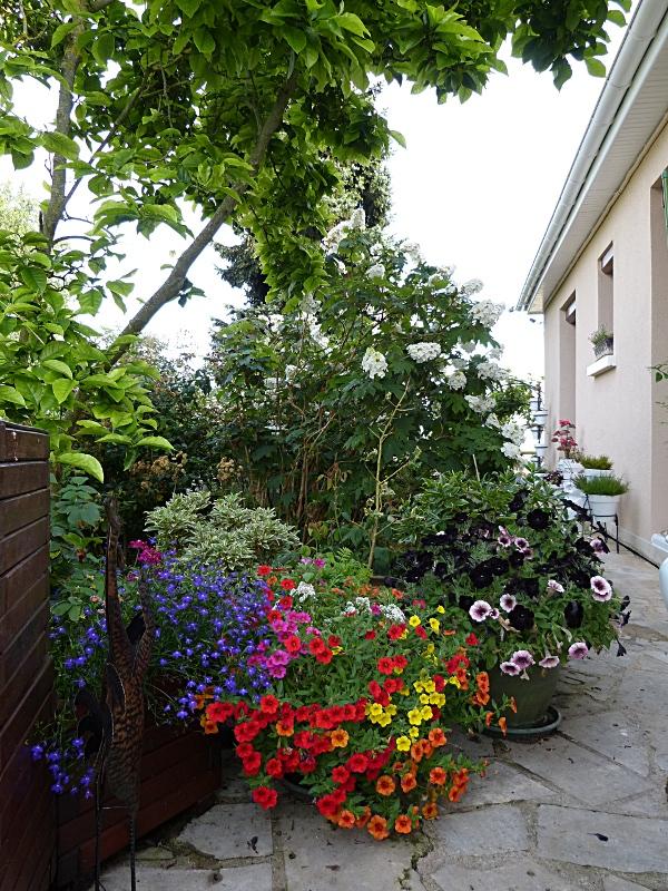 jardin des `MAL`AKHIM  Lysiane:visite_du_jardin:2012:p1020382r