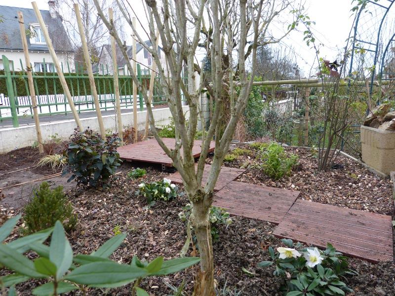jardin des `MAL`AKHIM  - Page 3 Lysiane:visite_du_jardin:2012:p1040685r