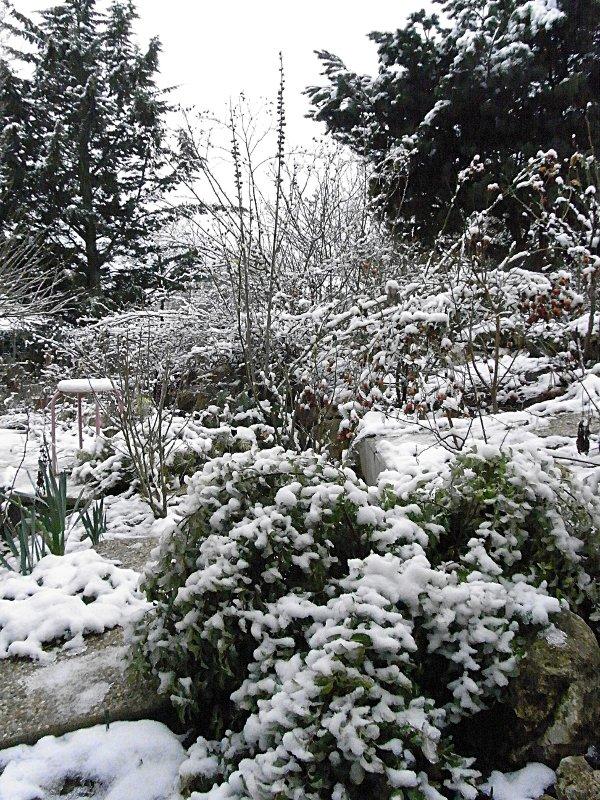 jardin des `MAL`AKHIM  Lysiane:visite_du_jardin:2012:r0030889r