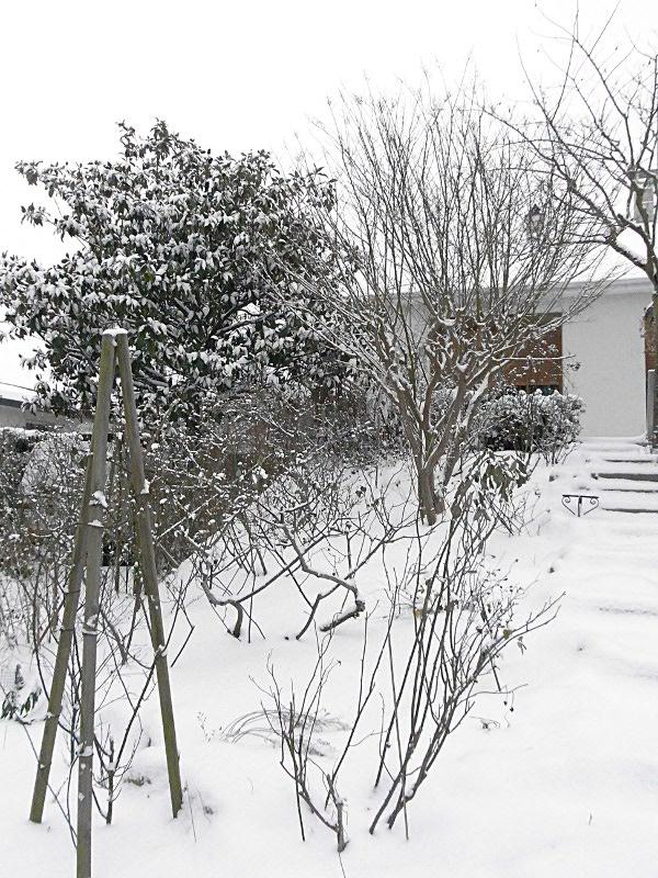 jardin des `MAL`AKHIM  Lysiane:visite_du_jardin:2012:r0030947
