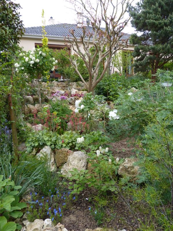 jardin des `MAL`AKHIM  - Page 3 Lysiane:visite_du_jardin:2013:p1050862
