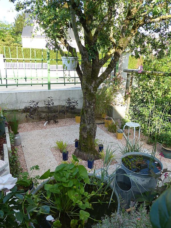jardin des `MAL`AKHIM  - Page 3 Lysiane:visite_du_jardin:2013:p1060452