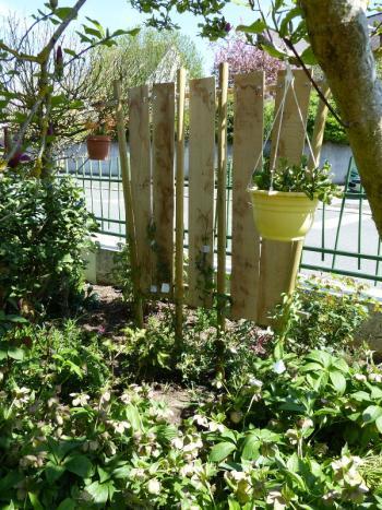 jardin des `MAL`AKHIM  - Page 6 Lysiane:visite_du_jardin:2015:p1050709