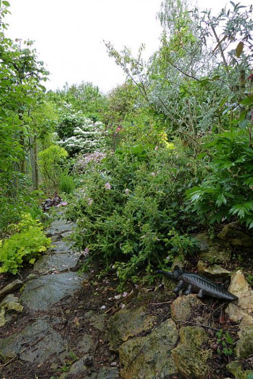 jardin des `MAL`AKHIM  - Page 6 Lysiane:visite_du_jardin:2015:p1180170